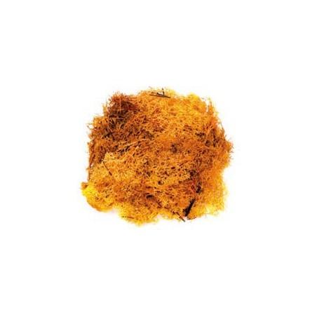 Mousse orange 50g