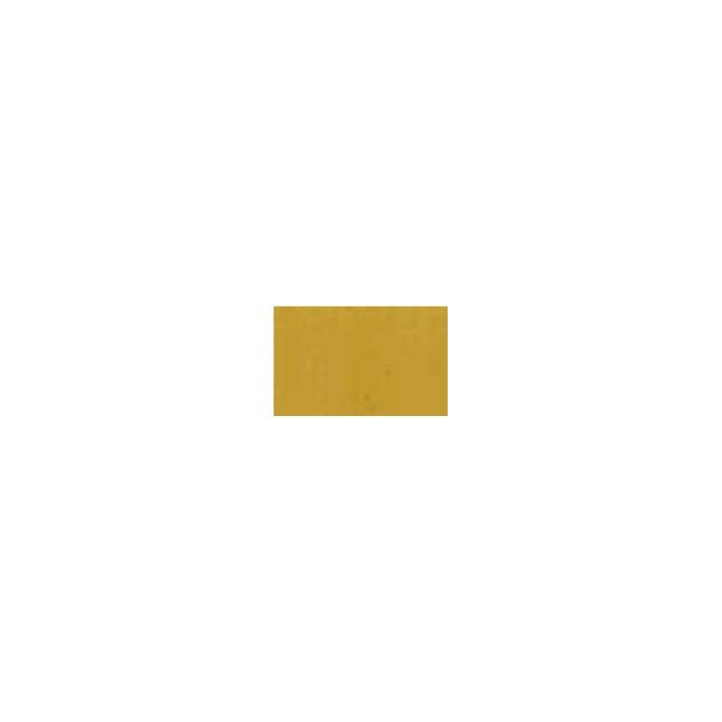 72055 - Polished Gold