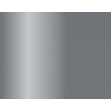 77724 - Silver