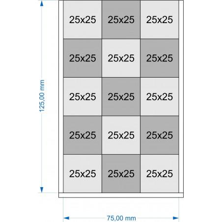 Plateau de mouvement 75x125mm