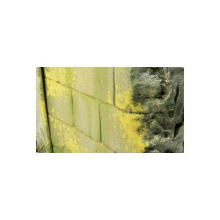73827 - Moss And Lichen Effect