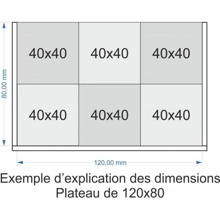 Plateau de mouvement 120x80mm