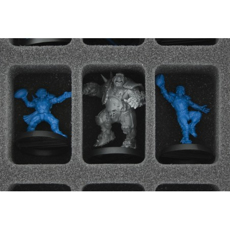 Feldherr MINI PLUS Case for 44 Blood Bowl miniatures - 2016 Edition