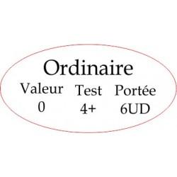 "Marqueur Général ""Ordinaire"""