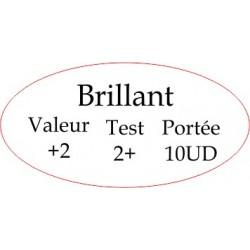 """Marqueur Général """"Brillant"""""""