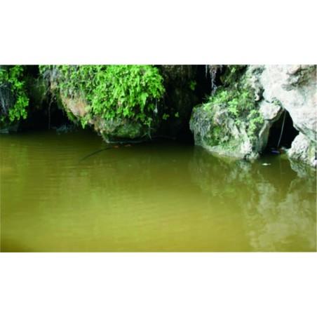 26230 - Still Water
