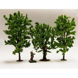 Mélange d'arbres à feuilles...