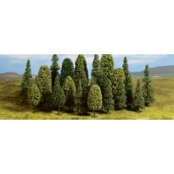 Fable Forest Modèle de...